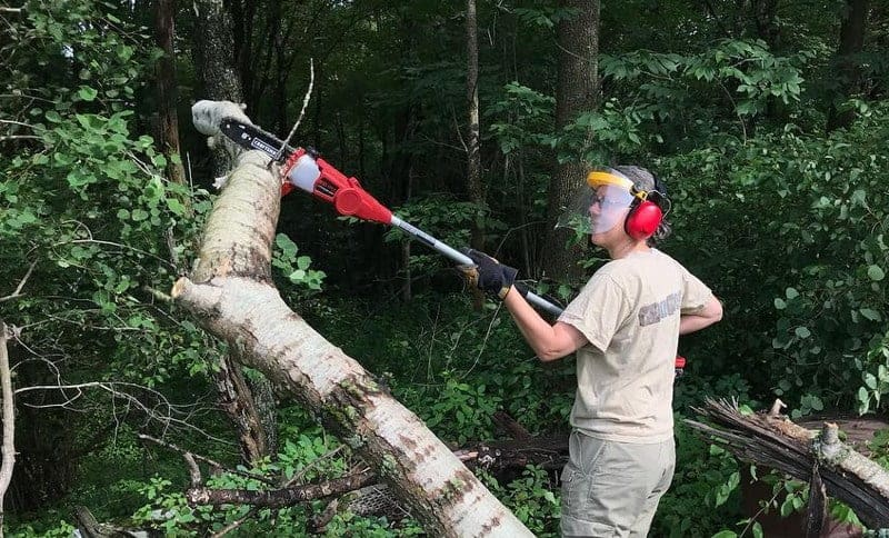 Cordless Pole Saw with Safety gears